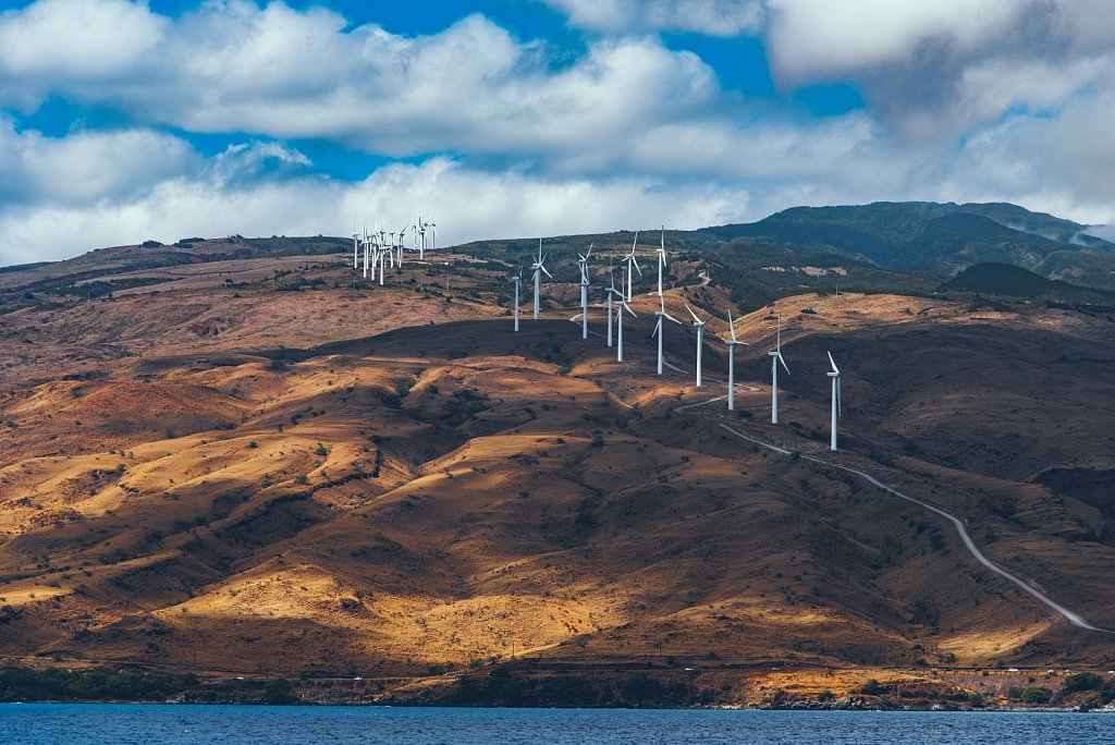 Windmill Farm on Maui